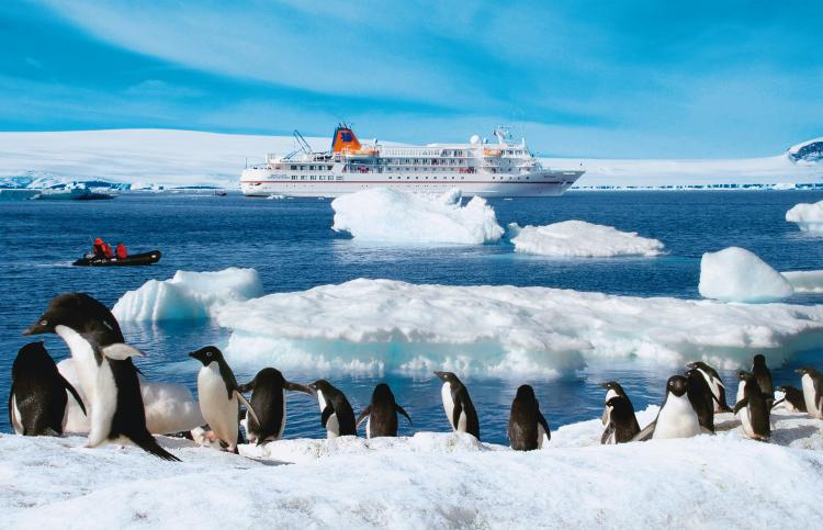 Hapag lloyd travel troll travel news for How to visit antarctica